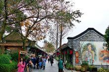【三九天周末•打卡安仁古镇】成都市大邑县•安仁古镇不仅有保存比较完整的清末民初历史街区、古建筑群,更