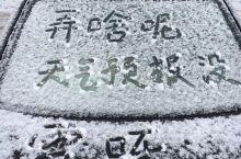 博兴下雪了 整体气温都在零度以下 想看雪的南方朋友抓紧来吧 月光洒在雪地上 冷静的醉人 就是要注意防