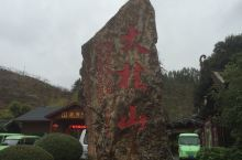 大桂山国家森林公园离贺州市区约30公里左右,原来是大桂山林场,改为公园后,原来林场的树木保留完好,所
