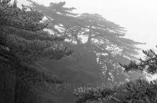 《来自华阴的诱惑:我真的想要去旅游……》  我是孤独浪子,希望我的拍拍让您有所收获。 漫游神州31载