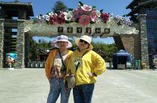 这里是贵州省毕节市百里杜鹃金坡景区,现在面向全国游客免费开放,可是停车费还是要收的,每辆车20元,有