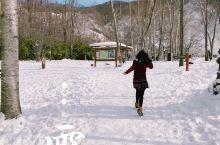 冬天来北海道看雪才是正经事~ 来登别无非就是泡泡温泉泡泡酒店,这里著名的景点除了熊牧场就是地狱谷啦!