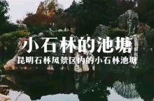 云南昆明石林风景区的小石林池塘。