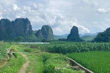 田园风格…徒步很合适,超级放松,采采路边的小花花