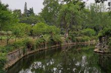 蠡园里面有好几个餐厅,桃源居的小笼包味道不错,豆花非常好吃,吃完午饭开始在人少的蠡园漫步是很遐逸的。