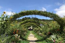 吉维尼的莫奈花园。