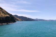 Akaroa (google search), 一个早期法国人在新西兰南岛城市基督城东南半岛建立的小
