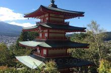 淺間公園,來富士山的一定要來這裡打卡,真的很美!