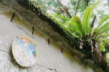 三貂岭——绿 三貂岭是个绿意盎然的山村,有着长长的铁路和蓝绿色的河流。风景很好,出站后满眼翠绿,是个