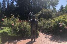 波特兰市玫瑰城的玫瑰园,果然名不虚传,各种盛开的玫瑰