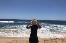 第三次的夏威夷游可是乐而忘返,每次去都十分悠闲,太爱你!