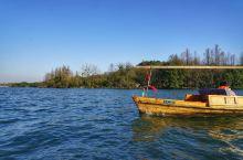 #春节游西湖# 晴天的西湖不一样的美,腊梅盛开梅花含苞待放,蓝天白云的西湖碧蓝透澈,给你一份过年游湖