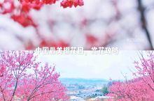 踏青好去处,中国最美樱花胜地,赏花全攻略  春天到啦,万物复苏,正是赏花的好时机。最近火爆朋友圈的