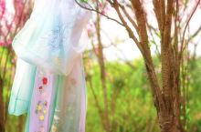 百花生日是良辰,未到花朝一半春。今年西溪湿地花朝节上,随处可见汉服小姐姐,据说以后节日期间穿汉服入园