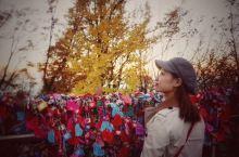 周末出游:  推荐地点:首尔南山塔赏秋,浪漫到不要不要的城市,连空气都弥漫着恋爱的味道。  推荐时间
