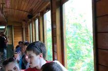 塞尔维亚之旅,选了去兹拉蒂博尔,在那三晚,选择了一日包车游木头村,小火车,还有国家公园,水中屋,最后