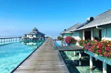 马尔代夫撒欢之旅——太阳岛  虽然不是第一次做快艇,但是,我是第一次坐两个小时,那么久的快艇啊!!!