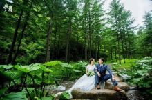 宁夏众游旅游带您走进天然氧吧,避暑圣地~六盘山森林公园,到宁夏给心灵放个假