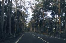 【Day8】沿途的风景&色彩斑斓的枫林
