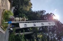 在箱根汤本车站乘坐箱根登山巴士H线或者乘坐芦之湖海贼船到元箱根站就可以步行到达箱根神社了。 箱根神社