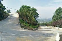 玉峰山与铁山坪是同一条山脉,它们之间在山上的公路是相通的。 龙门步道和玉峰山步道是一条步道,玉峰山下