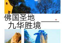 九华山位于安徽省池州市境内,世界地质公园,是以佛教文化和自然与人文胜景为特色的山岳型国家级风景名胜区