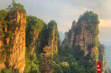 杨家界索道看山