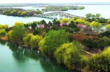 东海之美,最美不过西双湖,有着苏北西湖的美誉,走近她,发现有过之,无不及:春夏秋冬都有美景,十二时辰