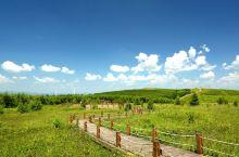翠云山,高山草甸,景色宜人,还有原始森林可以漫步其中。地处崇礼,是一处休闲度假好去处。