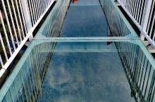秋天故事.高空行走/skywalk。灵江源森林公园位于浙江金华磐安县。我们对这里的玻璃栈道桥和悬空桥