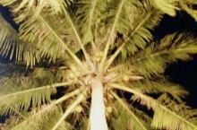 沙巴岛,空气新鲜,腾空万里的感觉,真让人想像不道的海景,醉截、醉截