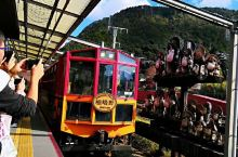 嵯峨野观光铁路位于京都,是由小火车嵯峨野站出发到小火车龟冈站,沿着风景优美的保津川溪谷缓慢行驶,单程