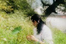 清晨,在廿九家被小鸟唤醒!拎着花篮来到溪边,采摘那娇艳的野花儿,插上一个秋天的美景!你是不是有些累了