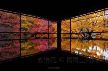 说到赏红叶名所,一年只在春季和秋季限定开放两次的京都琉璃光院绝对排得上号。 除了典型的日式庭院外,透