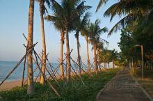 三亚湾的晨曦,海浪、椰树、微风……