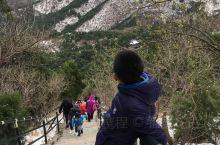 一山有四季,四季不同天!第一次春天来香山,虽然山上的山桃、杏花已谢,山下的连翘、玉兰、榆叶梅却开得任
