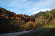 十月底的黎坪没有到最美的时候,也很值得去一次了。