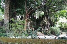 谢鲁山庄有5座假山,第五座位于眼镜塘上方,起着装点景观作用。要看这座假山,得绕到池塘上面,绕上去才发