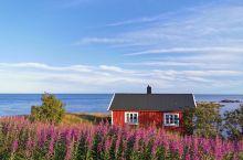 挪威的lofoten 群岛,但您初到那刻,觉得平平无凡,就时一个小鱼村,然而当您住在群岛里面几天,就