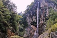 在四川省的宕昌县有一个官鹅沟景区,相信川内的小朋友们都不陌生,这次亲身去到这山水之地,感觉灵魂都在放