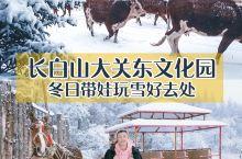 长白山大关东文化园民俗游坐着马车穿越大雪找人参娃娃 这一天超级幸运 我们从敦化一早出发就开始下着小雪