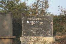 唐崇陵南神道上的石刻鸵鸟与鞍马
