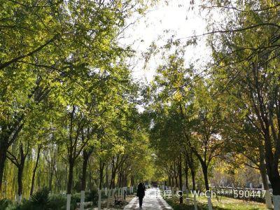南丹溫泉公園