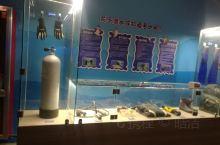今天来到寿光的极地海洋馆去参观,之后来到了潜水介绍潜水的地方,在这里了解了潜水的知识啊,还有各种的潜
