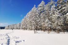 """老里克湖,和龙市一个小众""""雪乡"""",游客稀少,但是景色绝伦。"""
