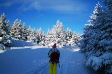 春节想去这里玩雪吗?负氧离子超高,长白山来了就不想走