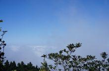 爬了几小时终于到了山顶,云海很美,仿佛置身仙境。国际黄金周人山人海就没挤去烧香了。始终相信爱出者爱返