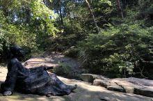 你有幻想过人杰地灵的古徽州是什么样的吗?在天柱山山谷流泉文化园,可以一秒穿梭到文人墨客游走山水之间,