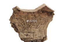 【刻划五叶纹陶片】浙江省博物馆藏。这件刻划陶片,为马鞍形扁方残块,属于河姆渡一期文化, 距今 700