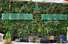 2020年春节在一天天的临近,去渭南最大的花市转转,买几盆花希望把家里装点的更加喜庆更加春意盎然。喜